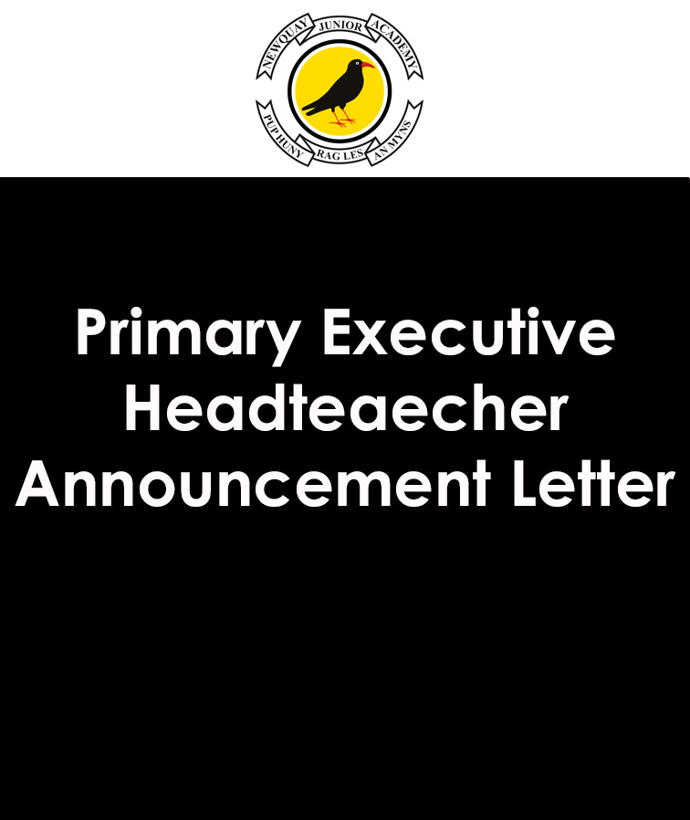 Primary Executive Headteacher Announcement